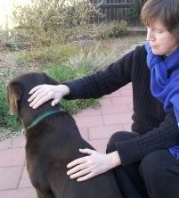 Animal Reiki:  Jan Fiore offers Reiki to dog